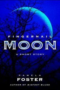 Cover: Fingernail Moon