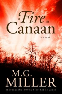 Book Cover: A Fire in Canaan